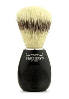 Barburys habemepintsel-0